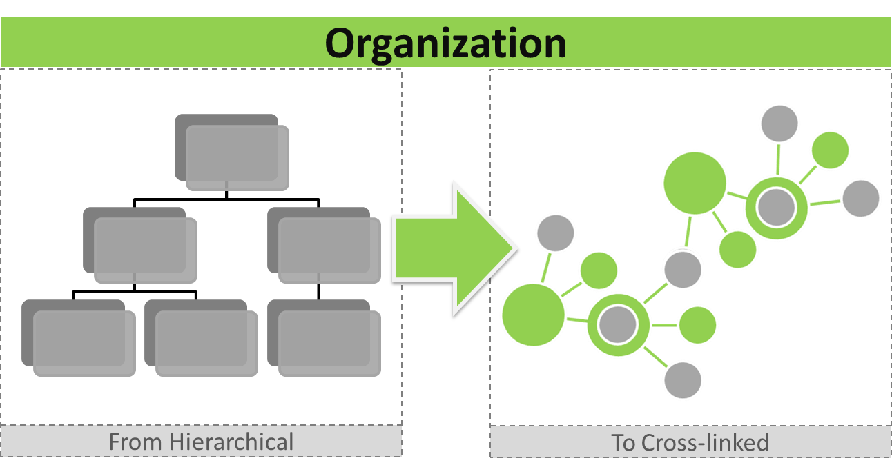 thechangeelements_from-hierarchical-to-crosslinked